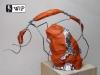 wip-rocco-indiegogo-2