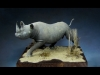 BoutBrousse_Rhinoceros_01