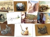 CPAfrique